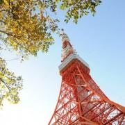 和装前撮り 東京タワー紅葉