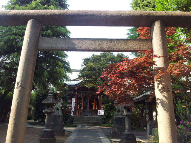青山熊野神社 白無垢着付け