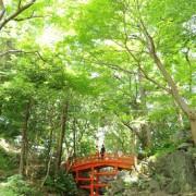 和装前撮り東京庭園格安