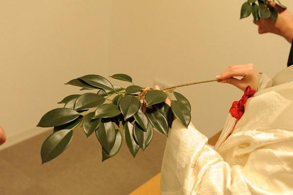 赤坂氷川神社結婚式 白無垢レンタル着付け