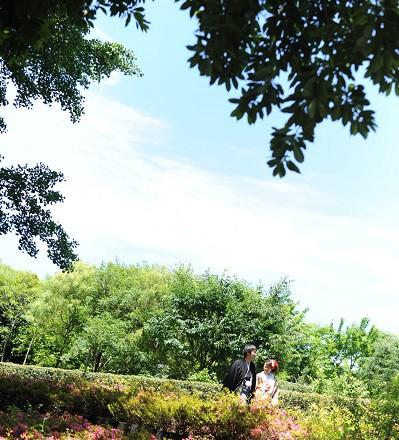 和装ロケーション庭園