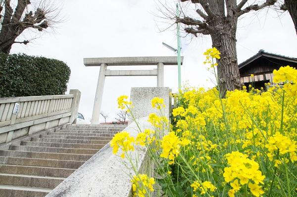 簸川神社結婚式白無垢レンタル着付けヘアメイク