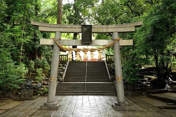 世田谷神社結婚式ブライダルカメラマン