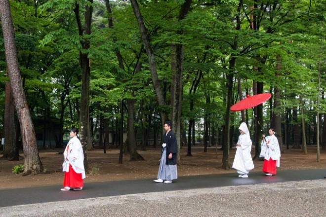 神社結婚式予約方法 家族式