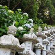 貴船神社結婚式真鶴と披露宴