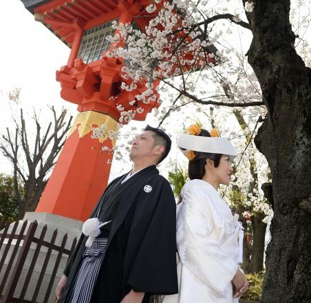 井草八幡宮 結婚式